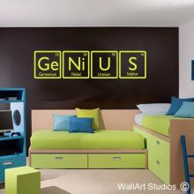 Genius Science Wall Stickers, educational wall decals, educational wall stickers, wall tattoos, wall art studios, custom wall decals