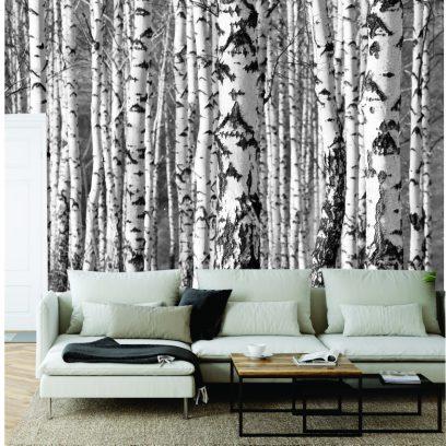 WMBT - Silver Birch Wall Mural